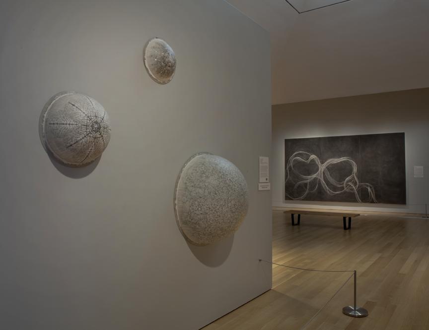 Installation image of work at the Grand Rapids Art Museum (GRAM)