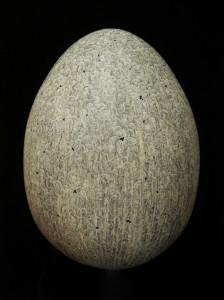 Egg_Prusa_8x11_300